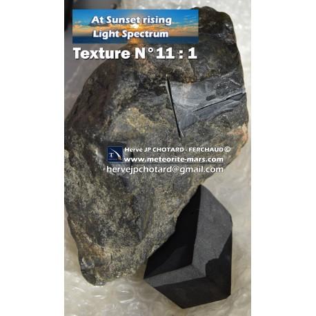 Texture N°11 - HUNTER ORIENTED