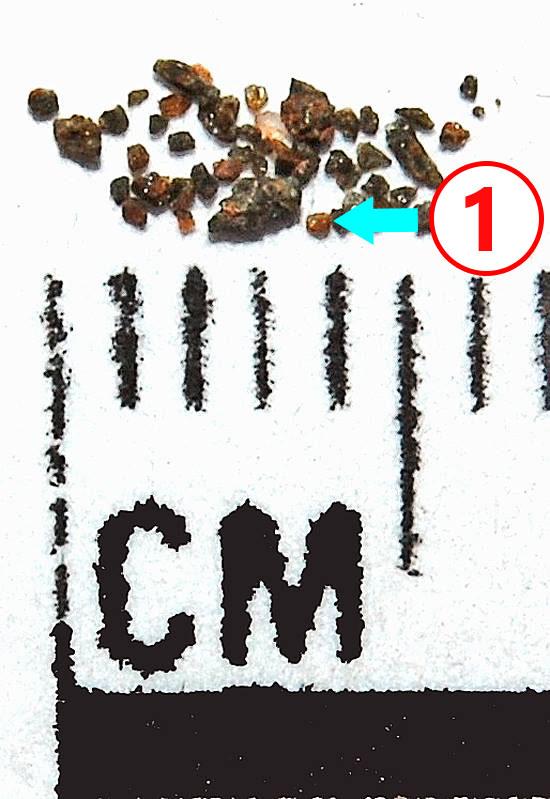 Texture comparative N18-3-1 météorite de Chizé www.meteorite-mars.com