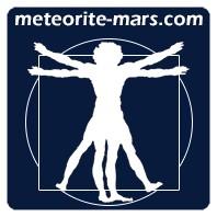 Météorite Chizé de Mars